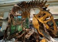 Unos 2.500 millones de T-Rex habitaron la Tierra, según un nuevo