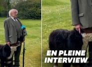 Le chien du président irlandais ne voulait pas le laisser finir son
