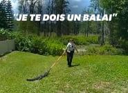 Aux États-Unis, ces officiers chassent un alligator avec un
