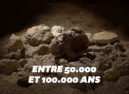 Neuf squelettes de Néandertaliens découverts dans une grotte en