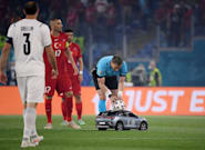 Euro 2020 Viewers Have Already Decided On TheTrue Hero Of The Tournament – This Tiny