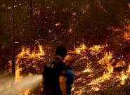 Una histórica ola de calor dispara los incendios forestales en Turquía, Grecia e
