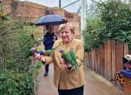 Cette photo d'Angela Merkel avec des perroquets vaut le