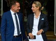 La extrema derecha alemana pierde fuelle: estas son las claves de su