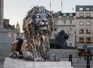 À Londres, il y a plus de statues d'hommage aux animaux qu'aux