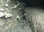 Un vídeo muestra el fondo marino cubierto de ceniza en La