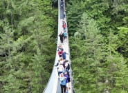 Best Earth Pics Shamed After It Goofs On Capilano Suspension