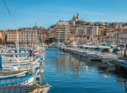 Dans le Vieux-Port de Marseille, un dauphin aperçu un sac plastique sur