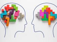 El cerebro crea la realidad a su
