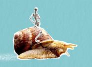 Contre l'arthrose, de la bave d'escargot et du brocoli? Ce qu'en dit la