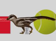 Corée du Sud: la plus petite espèce de dinosaure découverte grâce à des