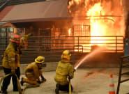 La vergonzosa respuesta de un jefe a un empleado al contarle que su casa estaba ardiendo en los incendios de