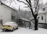Severe Storm Wreaks Havoc Through The