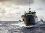 España logra mantener la cuota de la merluza sur tras cuatro años de