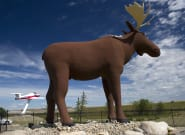 Moose Jaw's Mac The Moose Statue Aiming For World's Tallest Title..