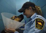 Ontario SPCA's Police Powers Are Unconstitutional, Judge