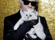 Mort de Karl Lagerfeld: qui se cache derrière le compte de