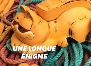 L'énigme des téléphones Garfield échoués sur des plages bretonnes enfin