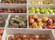 Federal Budget 2019 Combats Food Waste With New National