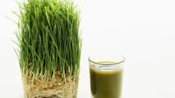 Get High on Green Powder -