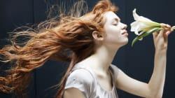 Savez-vous quelles sont les 10 catégories d'odeurs les plus