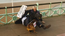 PHOTOS: LBC Presenter Tackles Protester (And His