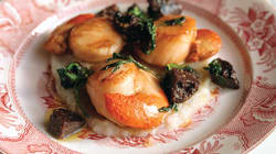 Scallops in