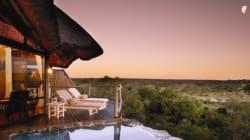 Günstiger Wechselkurs: Luxusreisen nach Südafrika zum