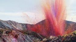 화산처럼 분출하는 꽃잎