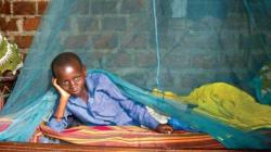 Malaria im Afrika-Eigentest: Schutz mit