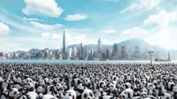 1600마리의 팬더곰과 함께 세계일주를 하는
