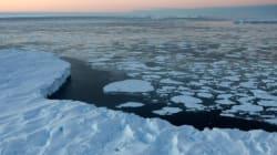 남극 동부서 대규모 빙하유실 붕괴