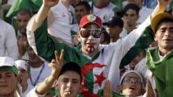 Supporters algériens au Brésil: Un parcours fou, fou,