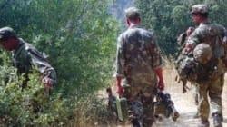 Deux terroristes éliminés par les forces de l'ANP à Ain