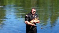美, 익사 직전의 개를 구한 경찰관