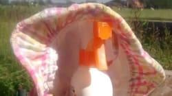 Sonnenschutz für