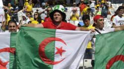 Mondial 2014: 10 raisons qui prouvent que l'Algérie a fait exprès de perdre son premier