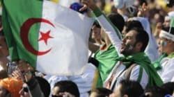 Les drapeaux Algériens autorisés de nouveau à Nice... Après l'élimination de