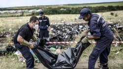 Les Pays-Bas enquêteront sur le crash du vol MH17 de la Malaysia