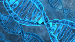 Etats-Unis: Un homme innocenté par des tests ADN après 26 ans de