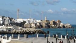 L'argent ne manque pas mais Alger n'arrive pas à être une capitale moderne et