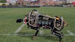 Première sortie pour le robot guépard du MIT