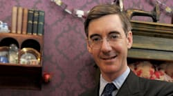 Moggmania Won't Last, But We Should Pay Attention