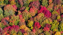 L'automne au Québec du haut des airs: des couleurs à couper le souffle!