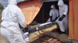 에볼라 사망자 5000명