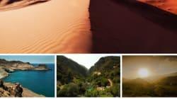 Découvertes: 12 mois, 12 destinations