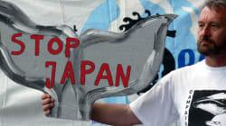 일본, 남극해 고래잡이 대폭