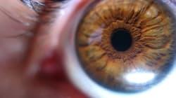Έχεις αχρωματοψία; Τώρα μπορείς να δεις κανονικά
