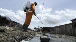 Paludisme: deux fois moins de personnes décèdent depuis