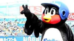 일본 야구단, FA보상선수로 마스코트